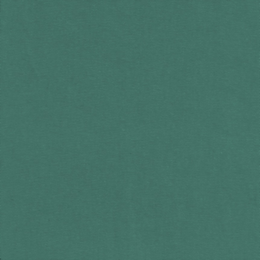 Textura-Tecido-Sarja-Flanelle-Verde-Bonzai-SA62C366-862pxl