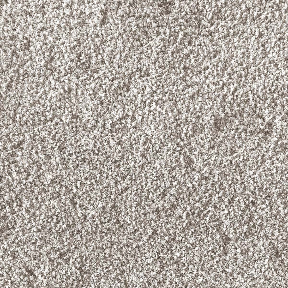 Photo Carpet Cleaning Product Images